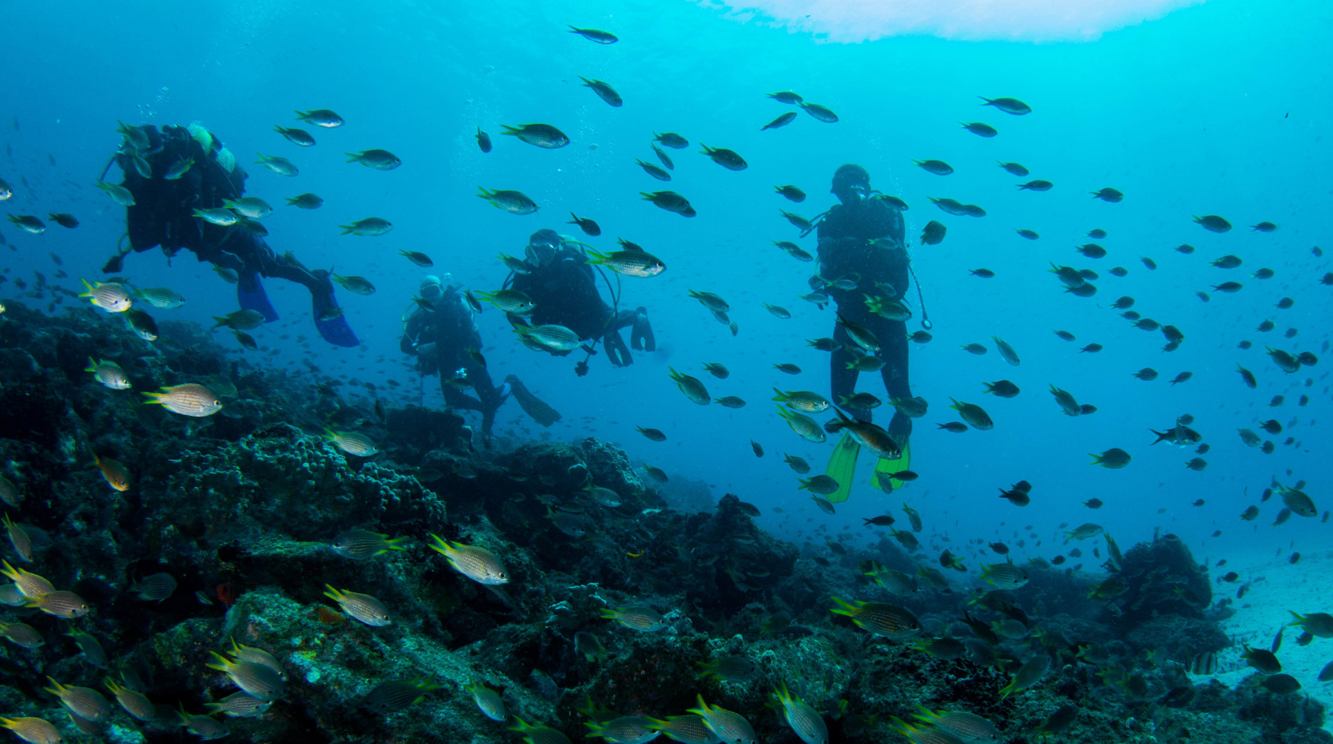 Dive Tribe's diving school in Cape Verde.